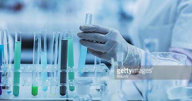 biotech scope in bangalore dating