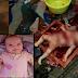 Keluarkan Hati dan Jantung utk dimakan, 7 Gambar Bapa Kerat dan Makan Organ Bayi Sendiri..