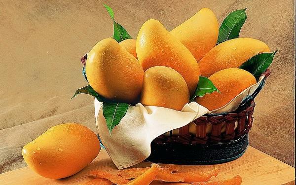 Lợi ích sức khỏe và công dụng làm đẹp da của trái xoài