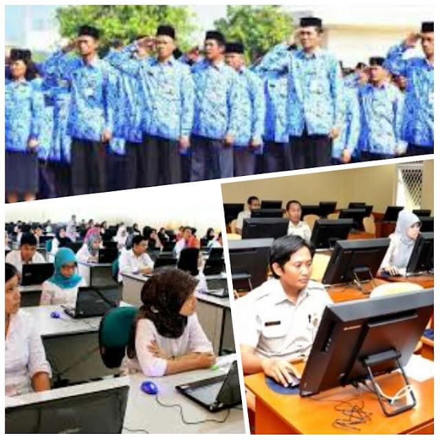 Update: Bulan Mei Penetapan Kuota Formasi CPNS 2016