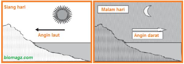 contoh perpindahan panas/kalor secara konveksi