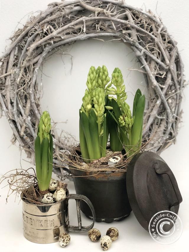 DIY Frühlingsdeko mit Hyazinthen und alten Küchenutenslilien