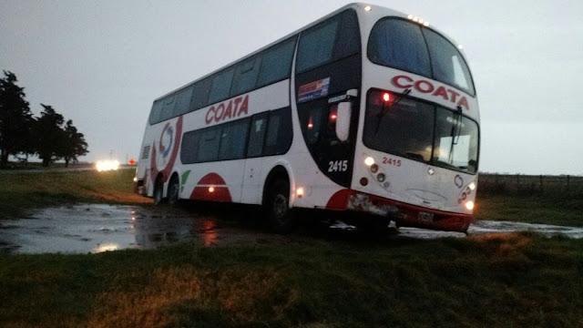 Un ómnibus de Coata terminó despistado luego que un árbol cayera sobre la ruta