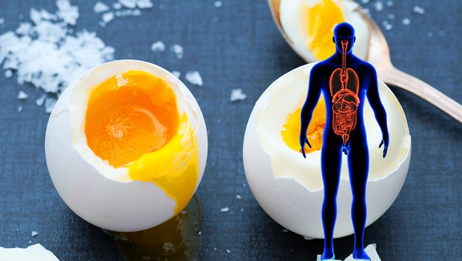 Here's What Happens To Your Body If You Eat 2 Eggs Daily !!!