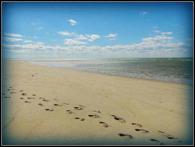 Great Island Trail: Playas con Arena Fina y Aguas Verdosas