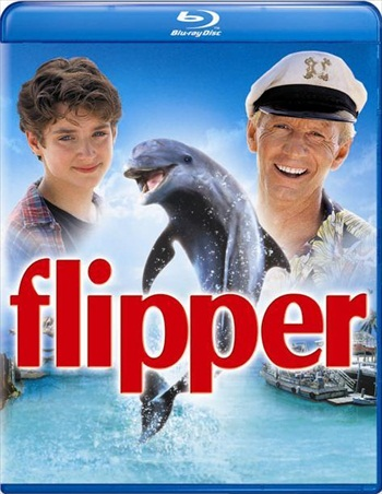 Flipper 1996 Dual Audio Hindi 480p BluRay 300mb