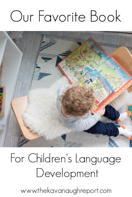 A look at our absolute favorite book - a treasured book for reading and for working on language development