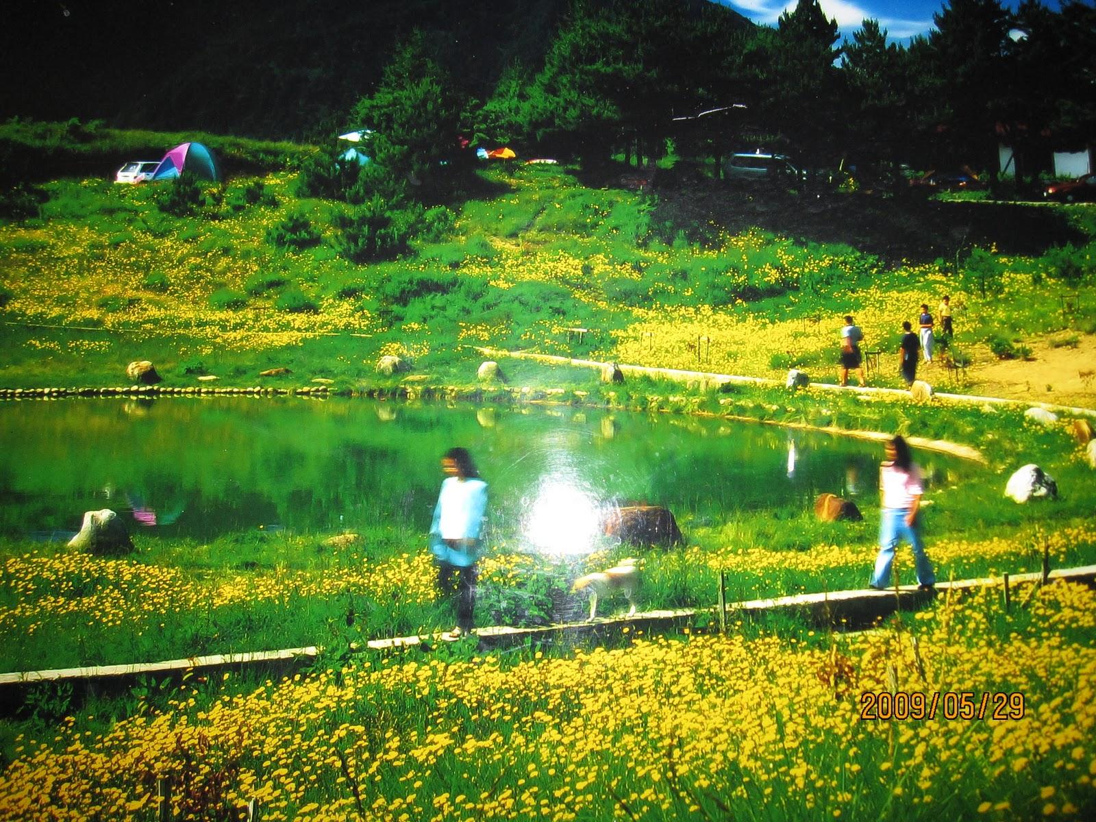 自然中.自然相: 福壽山農場