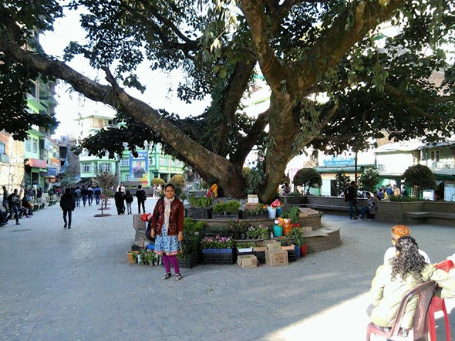 Namchi Central Park_DoiBedouin