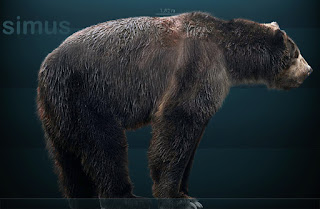 Oso gigante prehistórico Arctodus Simus