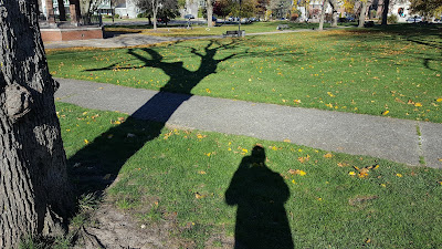 how far does your shadow cast?