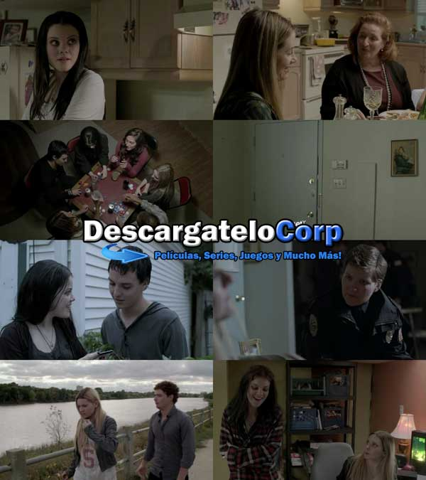 Descargar Hermanas Perfectas DVDRip Latino