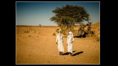 Densidade populacional do Saara