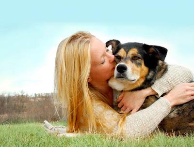 Cuida tu mascota como cachorrito