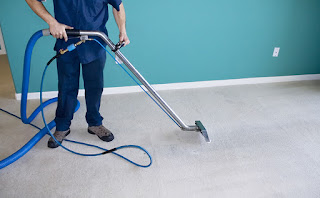 Why Choose Carpet Cleaning