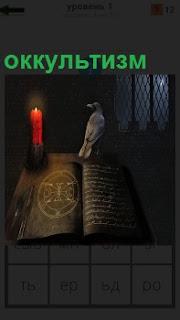 В темной комнате предметы оккультизма, горит свеча, сидит птица и старинный фолиант открыт
