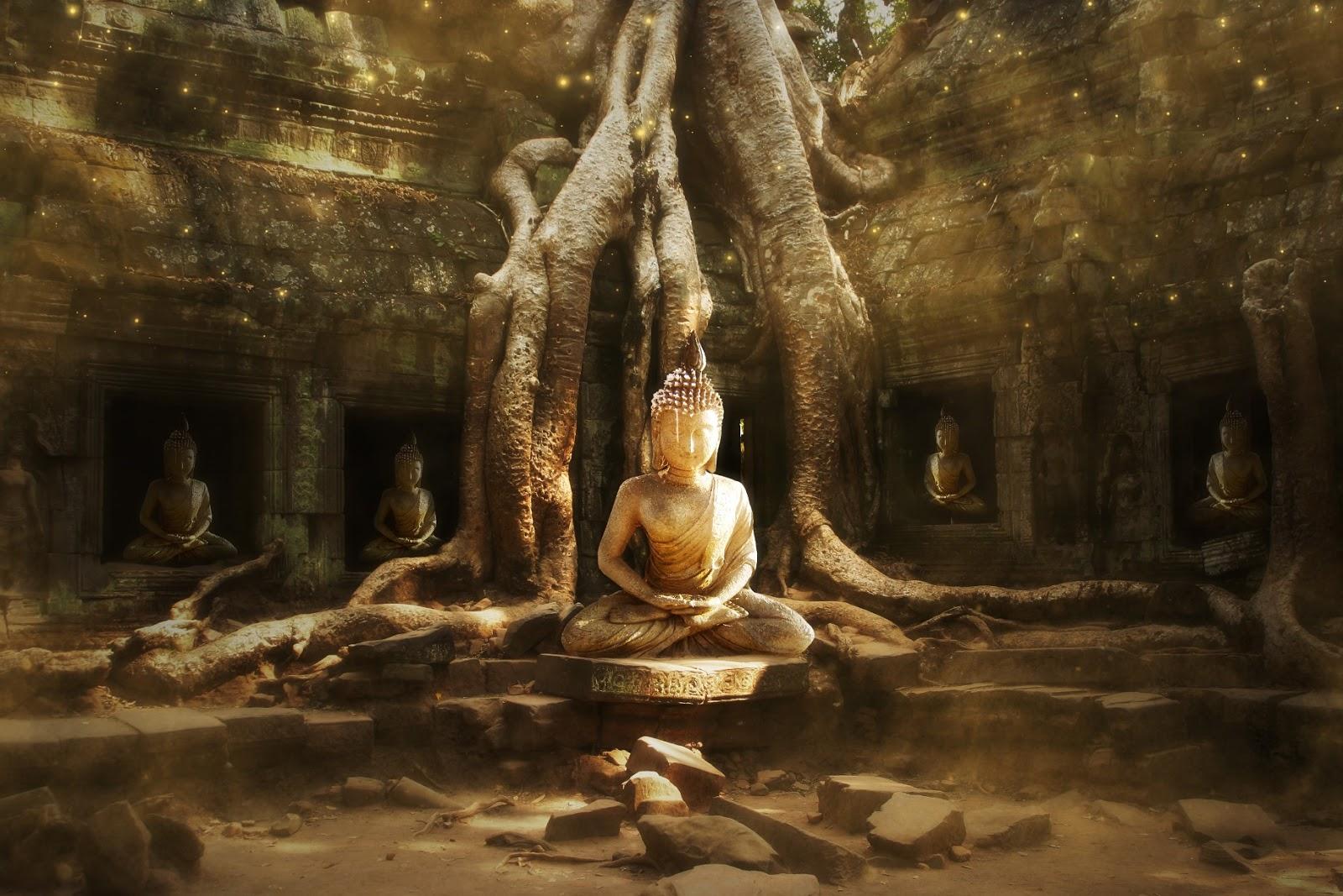 Resultado de imagem para AUSÊNCIA DE EU,IDENTIDADE E INTERDEPENDÊNCIA NO BUDISMO