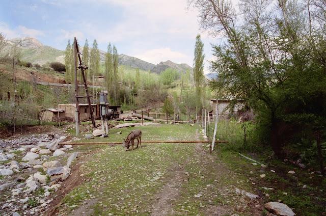 Ouzbékistan, Samarcande, M39, © L. Gigout, 2002