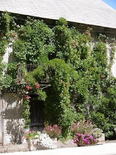 Terrasse fleurie, Pont du Fossé, malooka