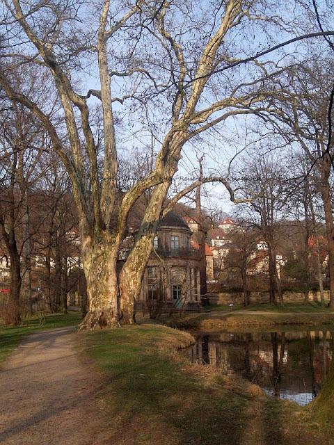 Pavillon und Teiche Dresden