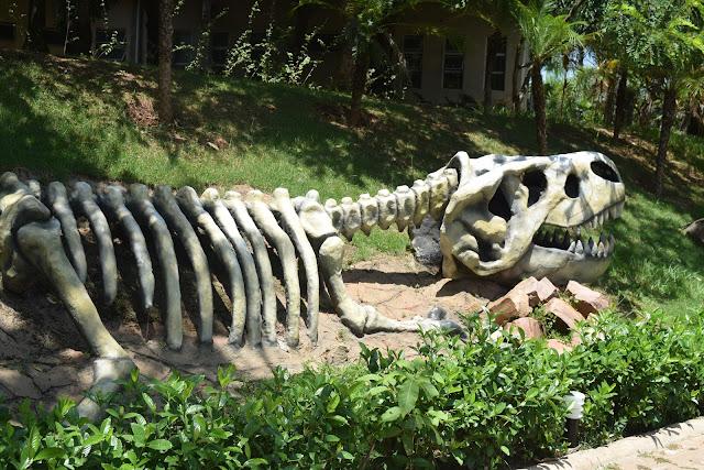 Conheça as atrações do Thermas Water Park