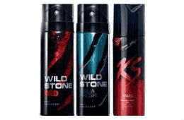 Pack of 3 KAMASUTRA & WILDSTONE Deo For Rs 269  Shopclues