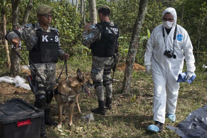 Suman más de 160 cráneos y restos óseos en narcocementerio de Veracruz: fiscal