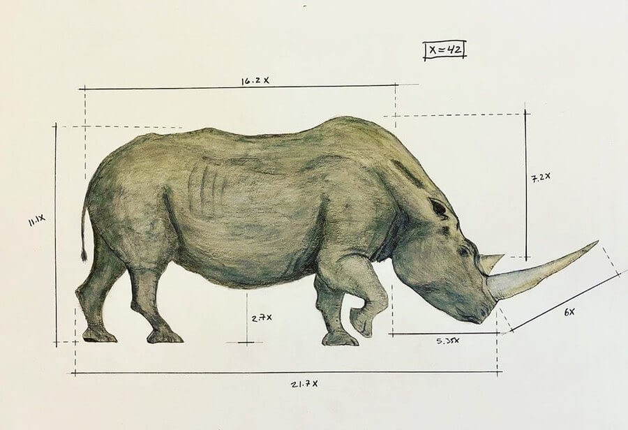03-Rhino-Ran-Shapira-Animal-Drawings-from-a-Sculptor-s-Perspective-www-designstack-co