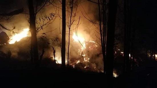Quảng Ngãi Cháy rừng làm một người chết