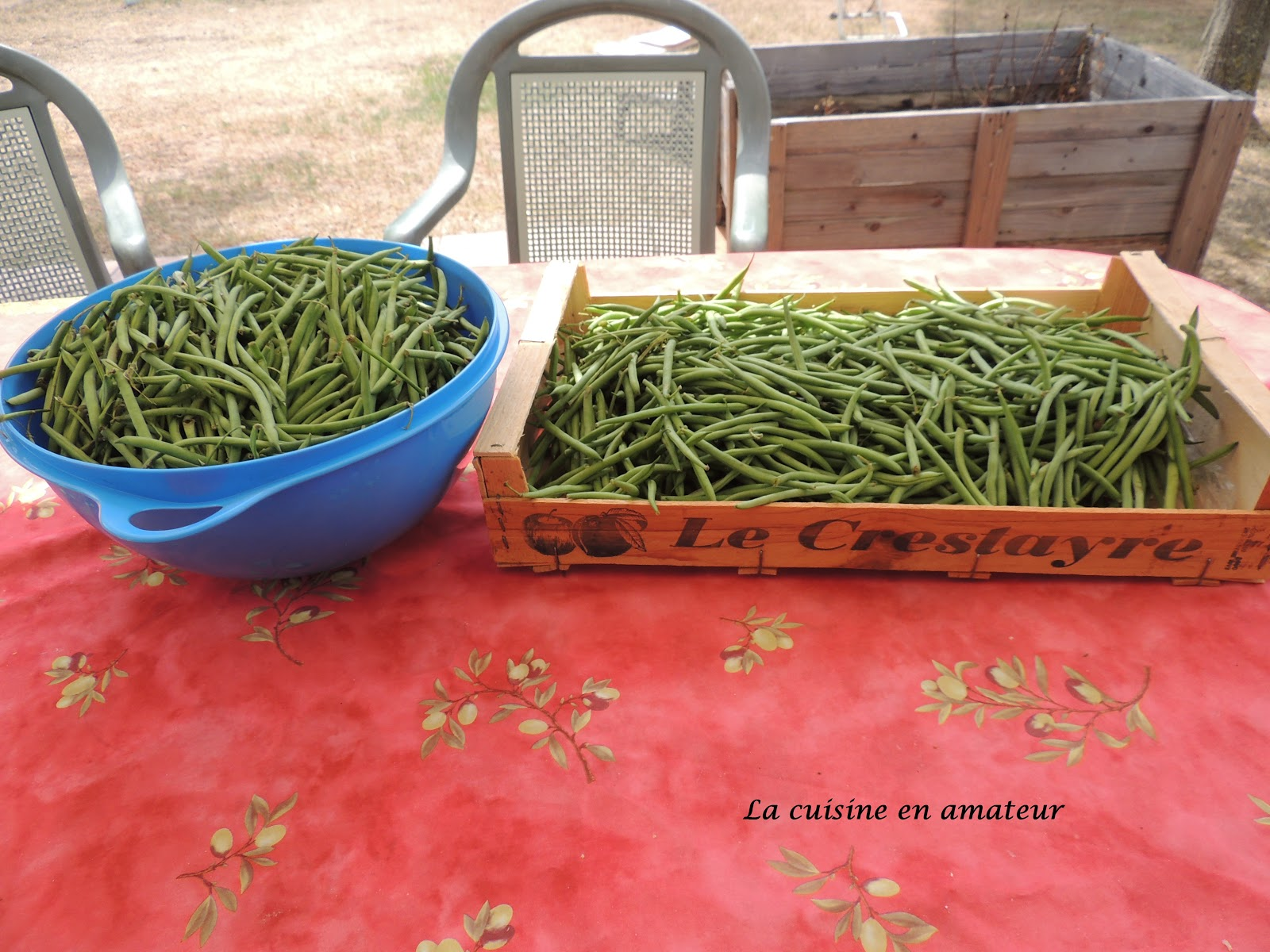 haricots verts sous vide blogs de cuisine. Black Bedroom Furniture Sets. Home Design Ideas