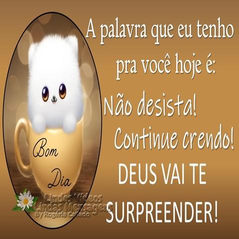 A palavra que eu tenho  pra você hoje é:  Não desista!  Continue crendo!  Deus vai te  surpreender!  Bom Dia!