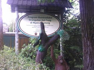 Arboretum Nyaru Menteng Kalimantan Tengah