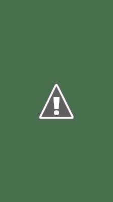 志志乃村神社-狛犬①