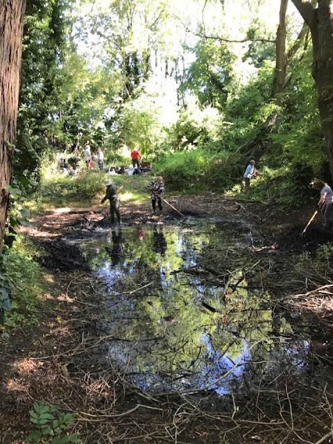 A group of volunteers raking Debdale pond