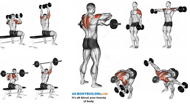 best shoulder workout