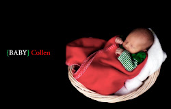 Newborn Photography Package $299+tax