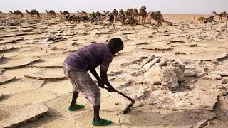 Alrededor de 1,3 millones de toneladas de sal se extraen anualmente y 750 mineros de sal registrados oficialmente trabajan en la zona
