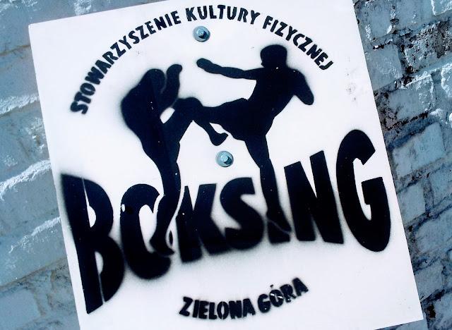 akcja szkoleniowa,lato,wakacje,trening,zgrupowanie sportowe,obóz,sport,kickboxing,muaythai,boks,Zielona Góra,Karpacz,Borowice