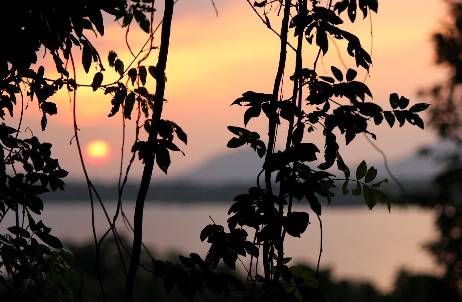 Geografie Sri Lanka. Geografia Sri Lanka: natura, clima, populația, flora și fauna