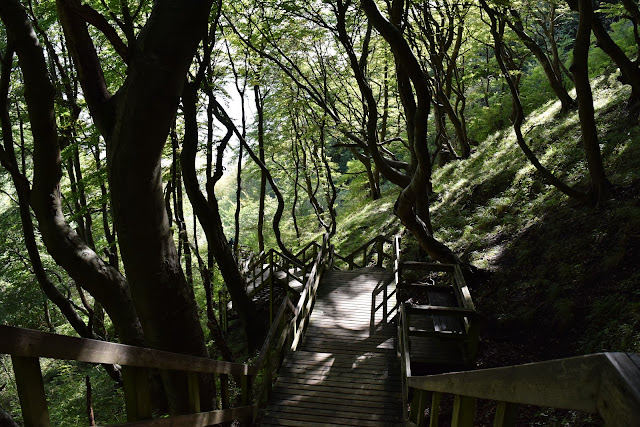 Stairs to the Beach at Møns Klint