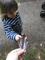 activité sensorielle en extérieur jardin bois foret enfant toute saison