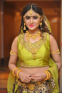 Sony Charishta in Green Choli Ghagra Transparent Chunni Ethnic Wear March 2017 022.JPG