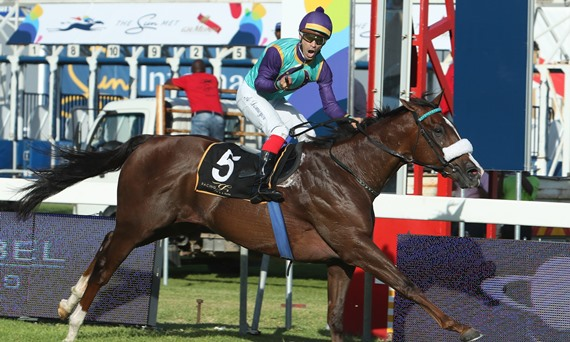 KRAMBAMBULI - Horse racing - South Africa - Trained by Justin Snaith