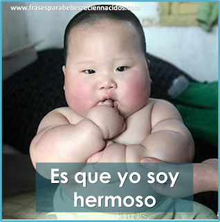 Memes de gordos y gordas causan gordura obesidad bebé obeso hermoso