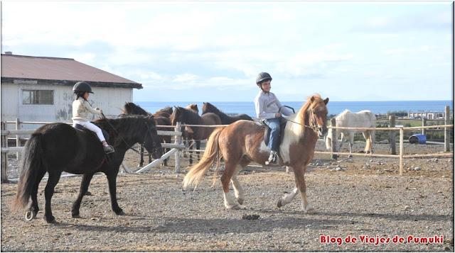 Montando el caballo Islandés en el norte de Islandia. Blog de Islandia