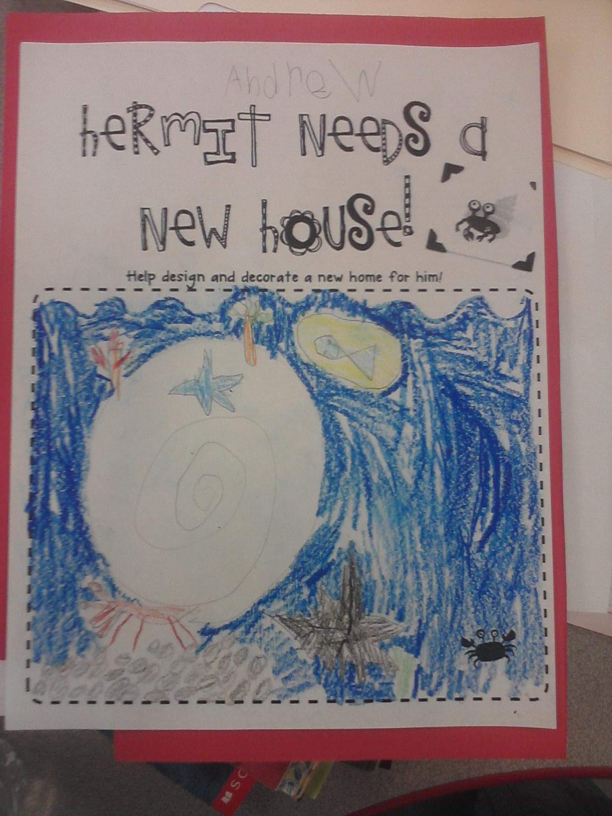 Primary Reading Party A House For Hermit Crab Amp Some Ocean Stations