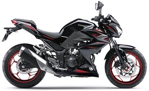 Review Kawasaki Z250