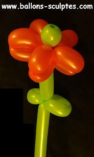 fleur doubles pétales en ballons