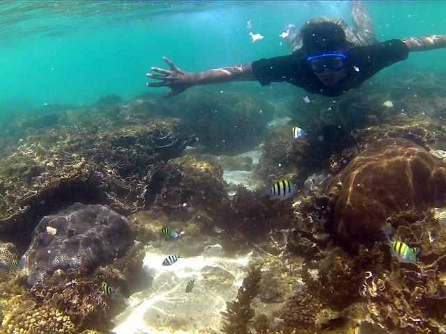 Hasil gambar untuk snorkeling di pantai kedung celeng