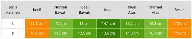 Tabel Ukuran Lingkar Lengan Bayi Usia Lima Bulan